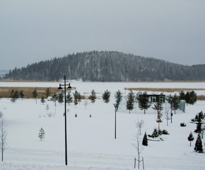 joulunmaisema2012